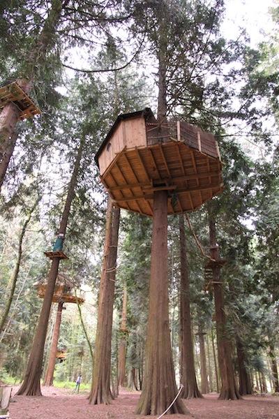 cabane aventure2