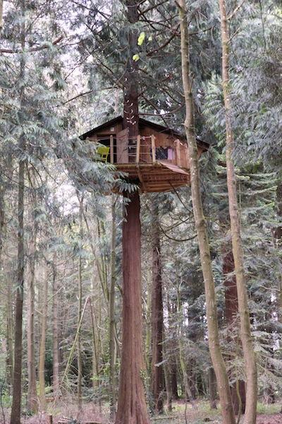 cabane aventure3