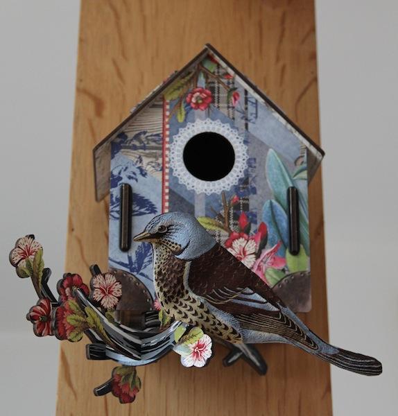 maison oiseaux6