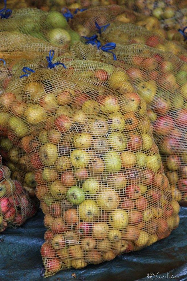 1pommes